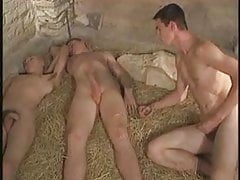 Captive Twink in Basement